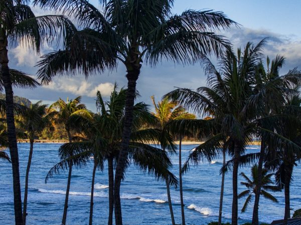 How Much Does It Cost to Move to Hawaii? Consider These 7 Expenses
